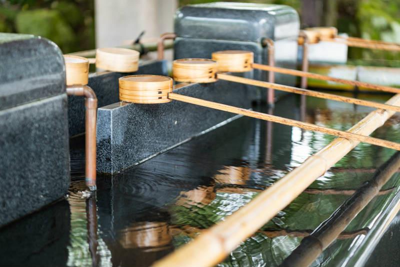 白山比咩神社_D5J1691-800p.jpg