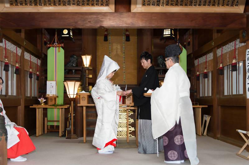 石川護国神社a-205-800p.jpg