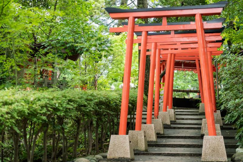 金澤神社_D5J1496-800p.jpg