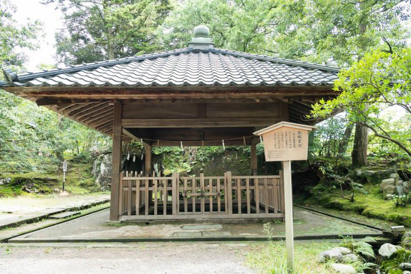 金澤神社_D5J1464-800p.jpg
