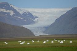 Iceland 000-438