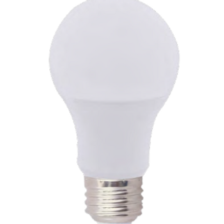 Standard A19 100W A-Shape Bulb