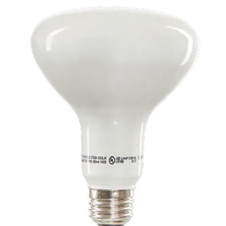Standard BR30 Flood Light