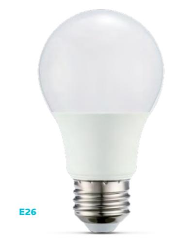 Standard A19 60W (E26) A-Shape Bulb