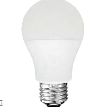 Standard A19 100W (A) A-Shape Bulb