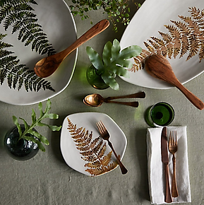 Fern Plate.png