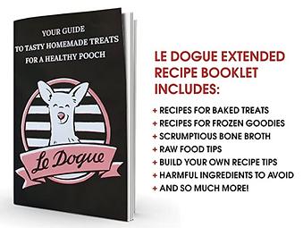 Dog Treat Mold and Recipe Book