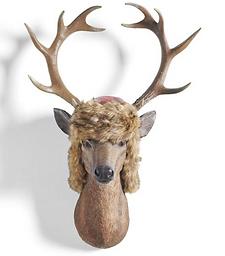 Rufus the Buck