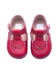 Robin Baby Shoe