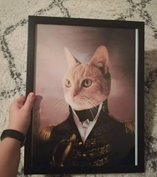 """""""The General"""" Pet Poster"""