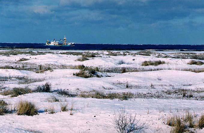 Winterlandscape Color 33.jpg