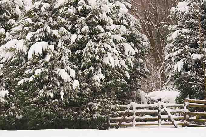 Winterlandscape Color 27