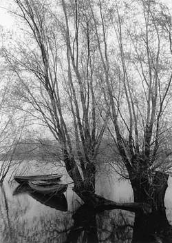 Landscape B&W 15.jpg