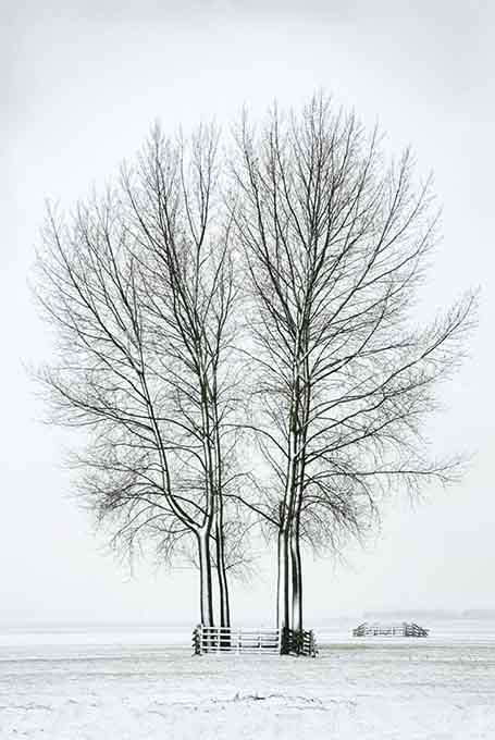 Winterlandscape Color 31