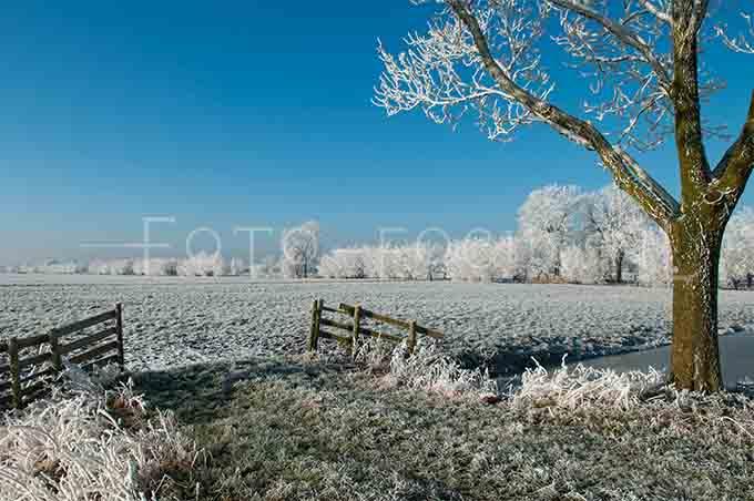 Winterlandscape Color 14.jpg