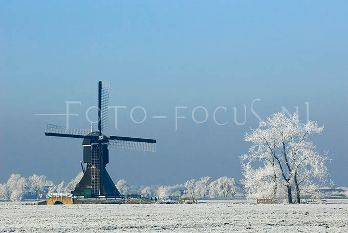 Winterlandscape Color 12.jpg