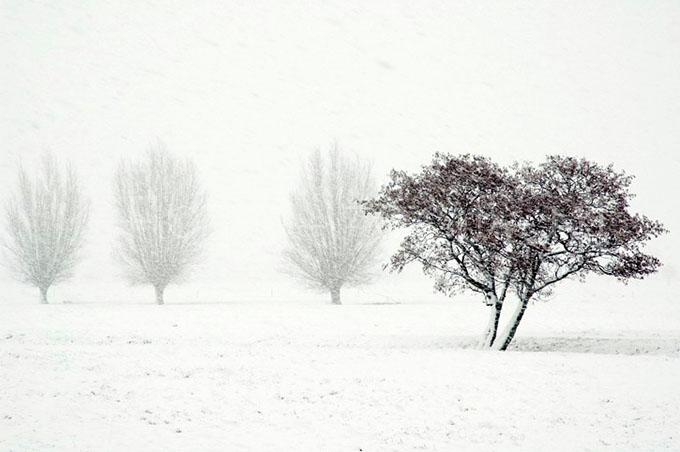 Winterlandscape Color 04.jpg