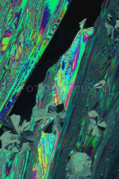 Experiments 18.jpg