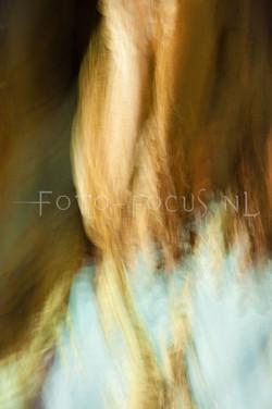 abstract 09.jpg