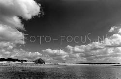 Landscape B&W 06.jpg