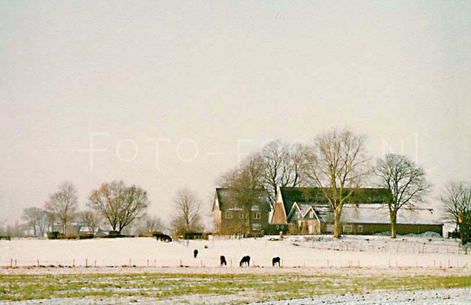 Winterlandscape Color 01.jpg