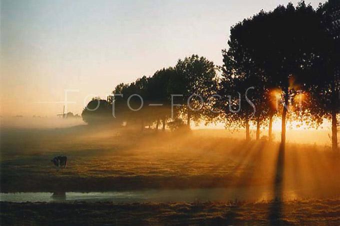 Landscape Color 01.jpg