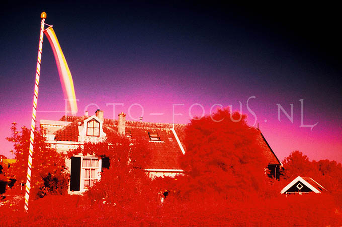 Infrared Color 005.jpg