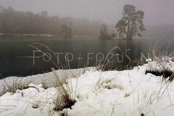 Winterlandscape Color 10.jpg