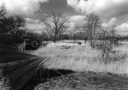 Landscape B&W 04.jpg