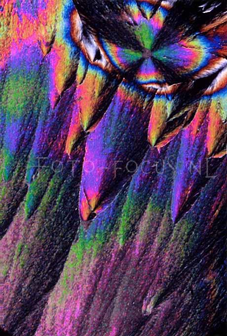 Experiments 13.jpg