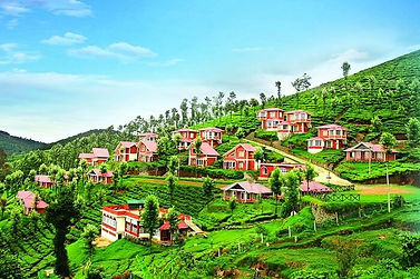 Bafna Holidays Ooty Coorg Mysore Tour Packages