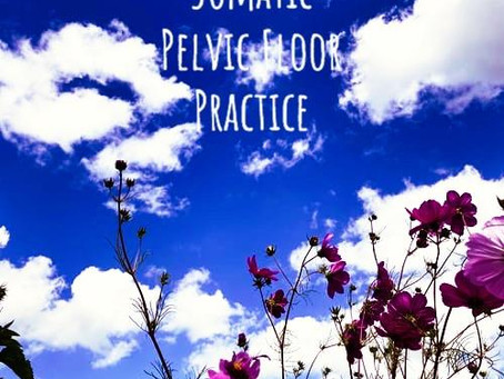Holistic Somatic Pelvic Floor Practice