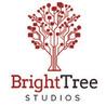 bright-tree-studios-logo.jpg