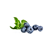 Bilberry .png