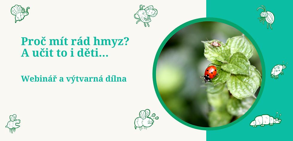 hmyz (2).png