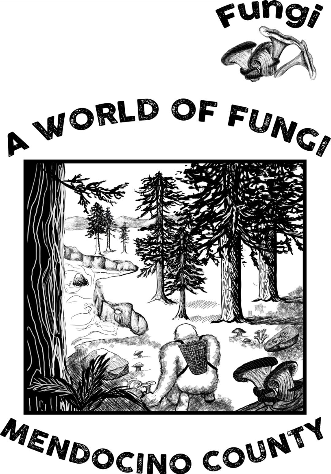 Mendocino Fungi