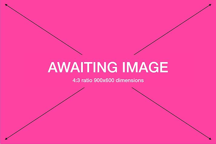 900x600_Awaiting Image PNG.png