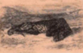panther(1)_edited.jpg