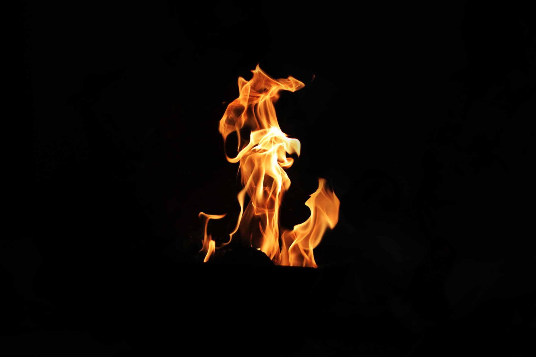 Eagle in the Fire