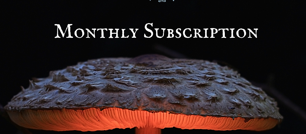 Mycology Mastermind Monthly Subscription