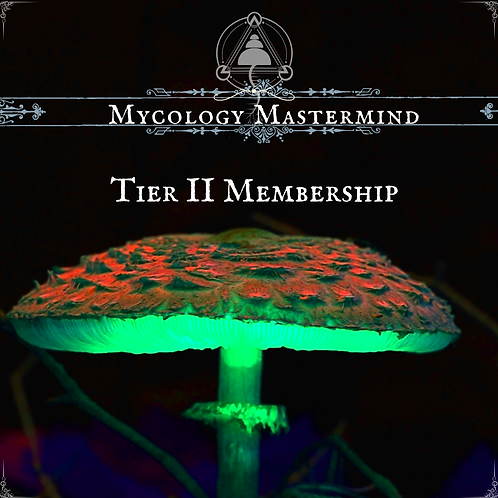Mycology Mastermind Tier II Subscription