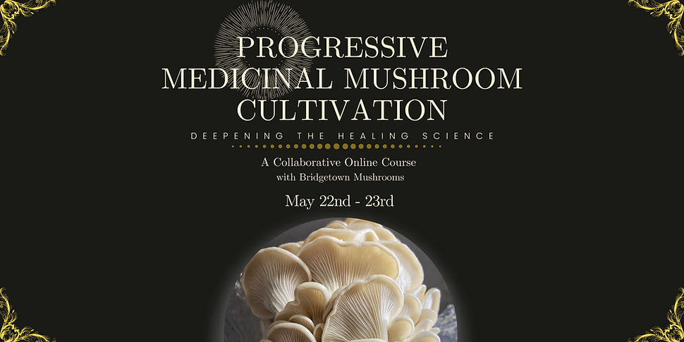 Banner Progressive Medicinal Mushroom Cu
