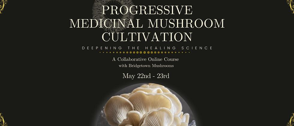 Progressive Medicinal Mushroom Cultivation Registration