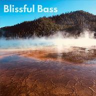 blissful bass.jpg