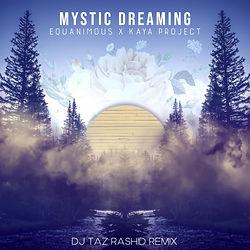 mystic dreaming taz remix.jpeg