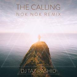 The Calling (Nok Nok Remix).jpg