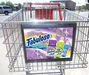 Fabuloso_Smart Source Carts Mock.jpg