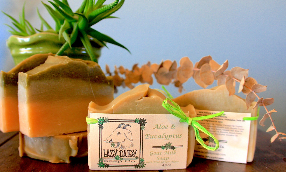 Aloe & Eucalyptus ~ w/ Green Clay & Spirulina