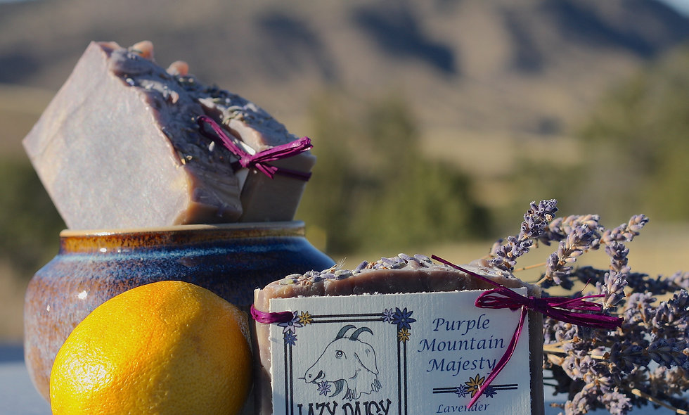 Purple Mountain Majesty Lavender & Lemongrass