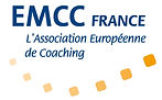 Transition-Coach_logoemcc.jpg